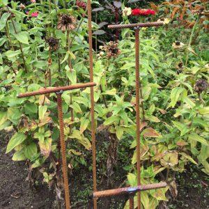 Planten steun staal